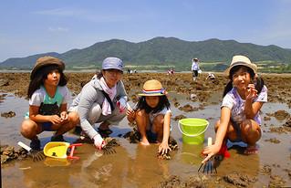 「浜下り(サニズ)」で多くの家族連れが潮干狩りを楽しんだ=30日午後、名蔵海岸