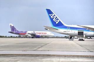 県内で那覇空港に次いで、税関空港に指定された南ぬ島石垣空港。国際路線を活用した特産品の輸出展開が注目される=(資料写真)