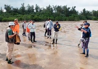 アンパルの自然を守る会のメンバーをとともに現状を視察する市、県の担当者ら=1月30日午後、名蔵アンパル