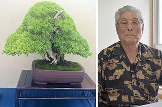 世界盆栽大会に初出展したハマシタン(左・上地さん提供)と上地源一さん=5月6日午前、本社
