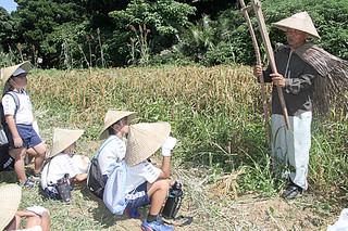 かつて脱穀に使われていた器具「フルマ」の説明をする竹本さん(右)=7日午後、小浜島