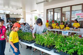自分たちで育てた野菜や花を販売する川原小の児童たち=4日午前、JAファーマーズマーケットやえやまゆらてぃく市場