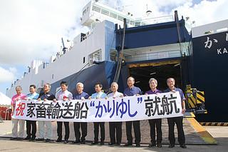 家畜輸送船「かりゆし」の就航を祝う関係者ら=17日午後、石垣港