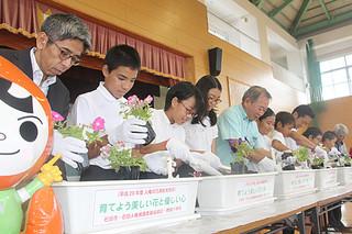 丁寧な手つきで「人権の花」の苗を植え付けする児童ら=27日午後、野底小学校体育館
