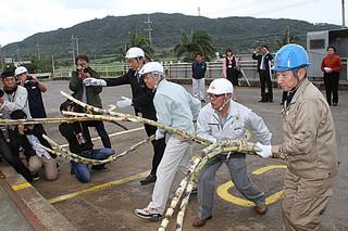 安全操業を願って、ケーンヤードにサトウキビを投げ入れる松林社長(右)ら=6日午後、石垣島製糖