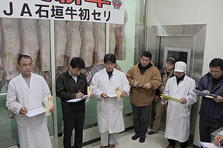 JA石垣牛初セリに参加する購買者。上物率100%で高値がついた=12日午前、八重山食肉センター