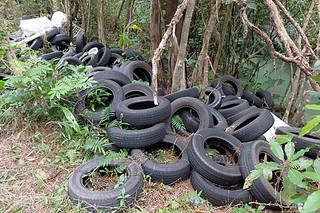 底原ダム通路沿いに大量に投棄されている廃タイヤ。斜面下の川にも落ちている=6日午後