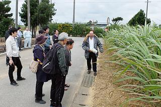 「液肥」「液肥+堆肥」「化学肥料」のパターンで栽培されているサトウキビについて説明を受ける関係者ら=9日夕、名蔵
