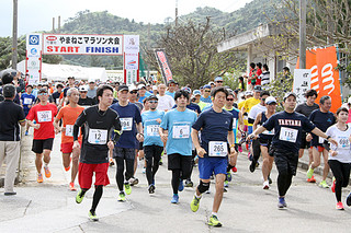 1347人がエントリーした第25回竹富町やまねこマラソン大会=10日午後、上原小学校