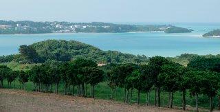 吉原側のパーキングから望む川平湾。住民らは「景観が破壊される」と変更原案に危機感を募らせている=24日午後