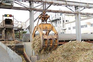 生産量を10万㌧余に上方修正し、フル稼働する石垣島製糖=5日夕
