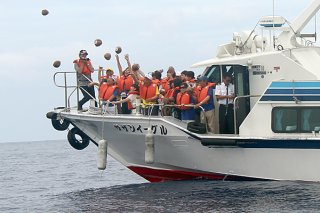 「愛のココナッツメッセージPart31」に参加し海へヤシの実を投げ入れる参加者ら=17日午後、石垣島沖合(渥美半島観光ビューロー提供)