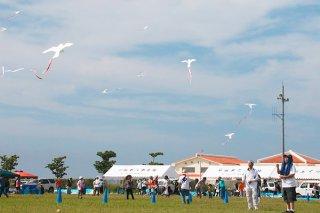 開会セレモニーで、平和の白い鳥凧を大空に揚げる参加者ら=24日午前、南ぬ浜人工ビーチ隣広場