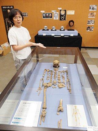 日本人類学会会員の土肥直美博士が説明する白保4号の全身骨格。20日から29日まで展示される=19日午後、石垣市立八重山博物館