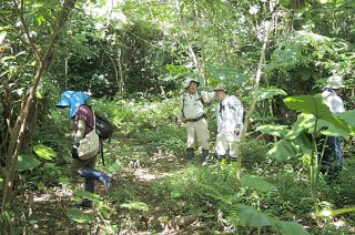 第3回の希少動植物調査を行うメンバーら=10月23日、平得大俣(渡辺賢一氏提供)