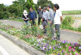 「第17回花と緑の街角コンテスト」に応募のあった場所を審査する審査員ら=14日午後、石垣市名蔵