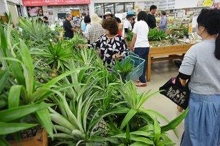 旧盆用の商品を買い求める地元客らでにぎわった=12日午前、ゆらてぃく市場