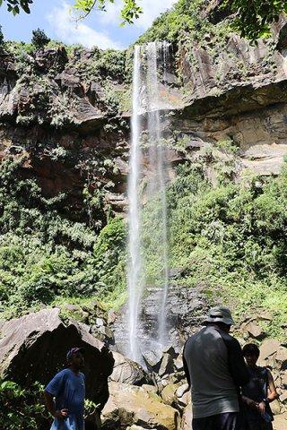 沖縄県内で約55㍍の最大落差を誇るピナイサーラの滝。自然体験ツアーの人気スポットだ=2019年6月29日