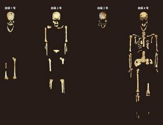 右は全身骨格がほぼ残った人骨としては国内最古の「白保4号人骨」=沖縄県教育庁文化財課提供