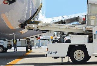 台湾出荷に向け、チャイナエアラインの機体に積み込まれる貨物。新石垣空港は2020年度から沖縄国際物流拠点活用推進事業の対象となる=2019年10月2日