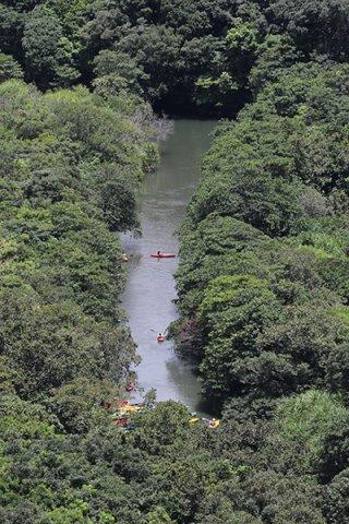 特定自然観光資源に指定し利用制限が検討されているヒナイ川=2019年6月29日