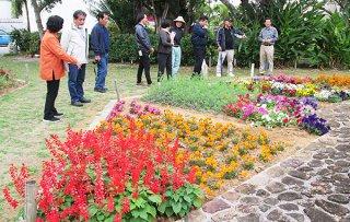 花と緑の街角コンテストに応募のあった場所を審査する審査員ら=12日午後、石垣市美崎町の大鷲の像公園