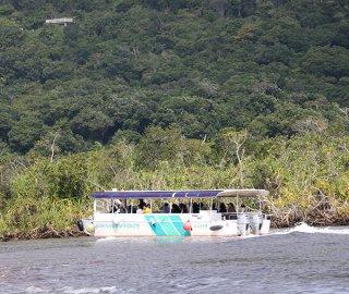 竹富町観光案内人条例の施行で、遊覧船での観光案内も免許が必要となる=2月24日、仲間川