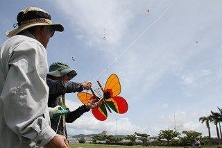 八重山凧愛好会のミニ交流会が開かれ、約40人が参加した=28日、南ぬ浜町緑地公園