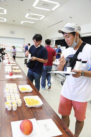 ことしの八重山産マンゴーを試食し品質を評価する会員ら=9日午後、八重山合同庁舎会議室