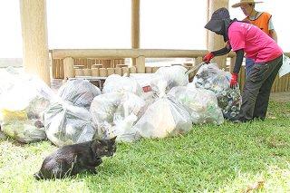 石垣島しっぽの会の清掃活動に参加し、南ぬ浜町の緑地公園をボランティア清掃する市民=22日午前、同所