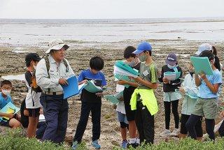 海岸沿いに自生する植物について説明を受ける子どもたち=26日午前、南大浜海岸