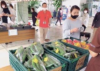 有人や無人販売で野菜を提供する「ゆいマルシェ」がスタートした=26日午前、石垣市役所