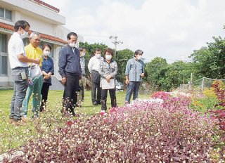 花と緑の街角コンテストの写真審査で選ばれた作品を現地で確認する審査員ら=11日午前、大浜公民館