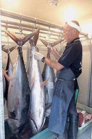 長期保存が可能な専用冷蔵庫に保管されているキハダマグロ=7日午後、ヤエスイ合同会社