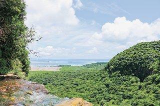 IUCNから世界自然遺産の「登録が適当」と勧告を受けた西表島の推薦地=2019年6月29日、ピナイサーラの滝
