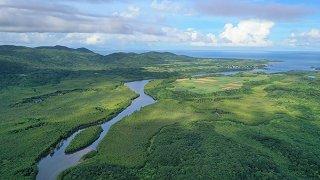 西表島の世界自然遺産登録の適否を決めるユネスコ世界遺産委員会が16日に開幕する=6月10日、仲間川